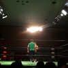 GREEN LIGHT YOKOHAMA~11.23NOAH横浜大会観戦記~
