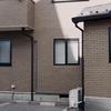 MAR.15,2020_角煮