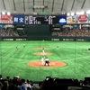 東京ドームで野球観戦☆野球がわからなくても雰囲気が楽しい!
