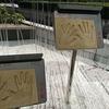 香港2日目①ー自由と不自由のあいだー