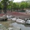 GWが終わりましたが、関西のおすすめの動物園のベスト3