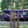 森を駆け抜ける信楽高原鐵道