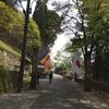 比叡山弥勒の石仏とお留守番のライチ