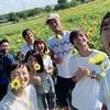 黄色いお花が咲いた日。
