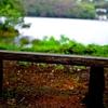 プチ写活②一碧湖