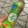 サントリー緑茶「伊右衛門」秋の味  飲んでみました