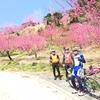 梅~桃~うどん~桜~!!