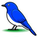 小鳥さえずるブログ