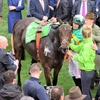 17/03/14 National Hunt Racing - Cheltenham Festival - Champion Hurdle (G1)