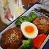 お魚豆腐ハンバーグの彩りのっけ弁当