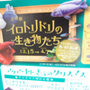 2018/11/22 次回企画展、ビジュアル解禁!