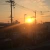 Morning Sun 朝日です。