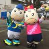 2018年5月3日(金祝)は、園田の兵庫大賞典