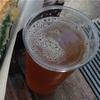 私がビールにハマったきっかけとなる2大ビールの話