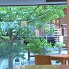 神楽坂レストラン・カフェ、神社の敷地内にある『赤城カフェ』