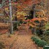 京都紅葉狩りの旅 2