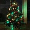 葉っぱがモッサモサ! 創業62年 老舗クリスマスツリー専門店の格安高級クリスマスツリーが超おすすめ!