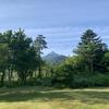 6日目:利尻島滞在 (4) 朝の散歩、フェリーで稚内へ移動