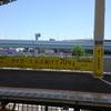聖地・阪神甲子園球場での濃厚な一日!阪神快勝でめでたし、めでたし。