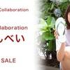 【第四弾】AKB48 15周年記念コラボ企画