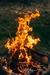 【キャンプ料理に】ガスボンベ・ガスカートリッジのおすすめ人気商品ランキングベスト5