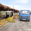ウズベキスタン旅行記(11) ヒヴァからブハラへ①