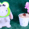 【CUPKE 夏モンブラン(くず風ミルクゼリー使用)】ローソン 7月7日(火)新発売、LAWSON コンビニ スイーツ 食べてみた!【感想】