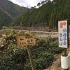 熊野古道 小辺路 雨の伯母子峠越え Day3