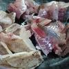 釣った魚を食べてみよう。お品書き:アジの刺身とカサゴの炙りとサバの塩焼き。