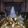奇跡の星の植物館 2018年は北欧の美しいクリスマスイルミネーション 開催期間やアクセス方法は?