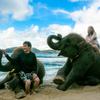 真っ青な空の日は南国ビーチでゾウさんと遊ぼう!