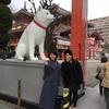 広島にある日本で1番龍のたくさんいる仙酔島と、龍のことについて。前編