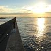 【初心者】秋は堤防から大物が釣れる!初心者こそ武庫川一文字をオススメする理由【関西の釣り】