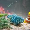 【名古屋】名古屋港水族館、特別展示のカラフルコレクションと、くらげなごりうむを楽しむ!