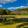 和台公園~つくば市とその周辺の風景写真案内(219)