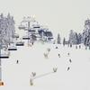 新潟県のスキー場が半額になる「にいがたスキーONI割キャンペーン」概要と最新情報まとめ