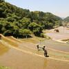 山村塾、アイガモの進水式