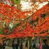 【京都左京区】南禅寺の疎水は当時21歳の若者が担当したすごい観光スポット!お寺の境内に洋風でモダンなデザインが素敵です。