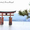 1歳児と宮島観光~宮島の風景、厳島神社、食べ歩き