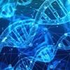 遺伝子で才能の半分は決まっている!?面白すぎる行動遺伝学
