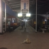 スリランカ旅行記 その9 電車の旅 キャンディからコロンボへ