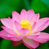 霊感を鍛えると霊能力が開花されるのか!