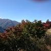 三峯神社に行きました
