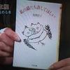 脚本家 北川悦吏子が勧める一冊『私の猫たち許してほしい』