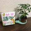 ちょこっと英語日記【豆乳グルト+プロテインがお気に入りだよ。の巻】