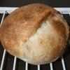 パン焼成時の横割れ、底割れの原因と解決のポイント