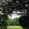 初夏のアーシング報告〜         次回は7月29日(土)開催です♪