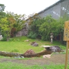 2019年 工事中の京都の寺社情報(追記)