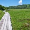 天空散歩パートII:高山の花を楽しみながら標高2,000mの湿原を歩く