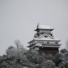 雪の、犬山城。